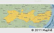 Savanna Style 3D Map of Pernambuco