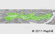 Political Shades Panoramic Map of Pernambuco, desaturated