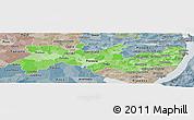Political Shades Panoramic Map of Pernambuco, semi-desaturated
