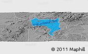 Political Panoramic Map of Pesqueira, desaturated