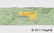 Savanna Style Panoramic Map of Pesqueira