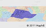 Political Panoramic Map of Picos, lighten