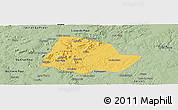 Savanna Style Panoramic Map of Picos