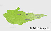 Physical Panoramic Map of Dom Pedrito, single color outside