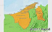 Political Shades 3D Map of Brunei