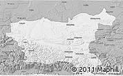 Gray 3D Map of Lovec
