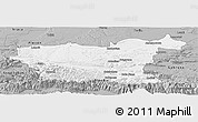 Gray Panoramic Map of Lovec