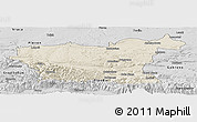 Shaded Relief Panoramic Map of Lovec, desaturated