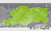 Physical 3D Map of Pleven, desaturated