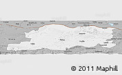 Gray Panoramic Map of Pleven
