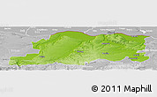 Physical Panoramic Map of Pleven, lighten, desaturated