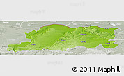 Physical Panoramic Map of Pleven, lighten, semi-desaturated