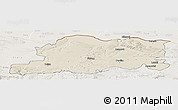 Shaded Relief Panoramic Map of Pleven, lighten