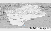 Gray Panoramic Map of Sliven