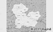 Gray Map of Targoviste