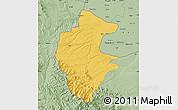 Savanna Style Map of Vidin