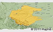 Savanna Style Panoramic Map of Vidin