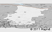 Gray Panoramic Map of Vraca