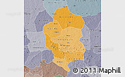 Political Shades Map of Bam, semi-desaturated