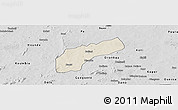 Shaded Relief Panoramic Map of Founzan, desaturated