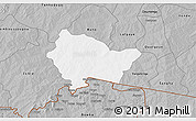 Gray 3D Map of Bittou