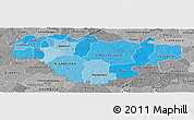 Political Shades Panoramic Map of Comoe, desaturated