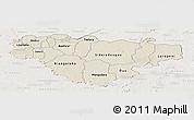 Shaded Relief Panoramic Map of Comoe, lighten