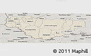 Shaded Relief Panoramic Map of Comoe, semi-desaturated