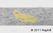 Satellite Panoramic Map of Liptougou, desaturated