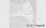 Silver Style Map of Poni