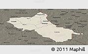 Shaded Relief Panoramic Map of Seno, darken