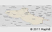 Shaded Relief Panoramic Map of Seno, desaturated