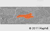 Political Panoramic Map of Niabouri, desaturated