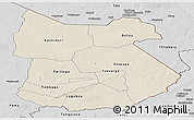 Shaded Relief Panoramic Map of Tapoa, desaturated