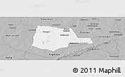 Gray Panoramic Map of Partiaga