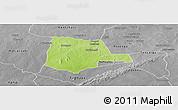 Physical Panoramic Map of Partiaga, desaturated