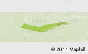 Physical Panoramic Map of Tambaga, lighten