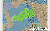 Political Map of Okpo, semi-desaturated