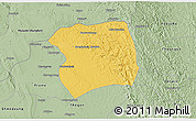 Savanna Style 3D Map of Paukkaung