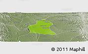 Physical Panoramic Map of Prome, semi-desaturated