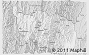Silver Style 3D Map of Tonzang