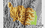 Physical Map of Tonzang, desaturated