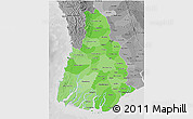 Political Shades 3D Map of Irrawaddy, desaturated