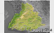 Satellite Panoramic Map of Irrawaddy, desaturated