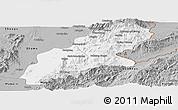 Gray Panoramic Map of Mansi