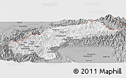 Gray Panoramic Map of Nanyun
