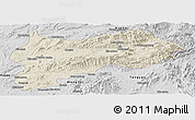 Shaded Relief Panoramic Map of Lashio, desaturated