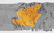 Political Panoramic Map of Ye-Ngan, desaturated