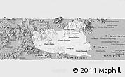 Gray Panoramic Map of Oral