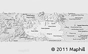 Silver Style Panoramic Map of Oral